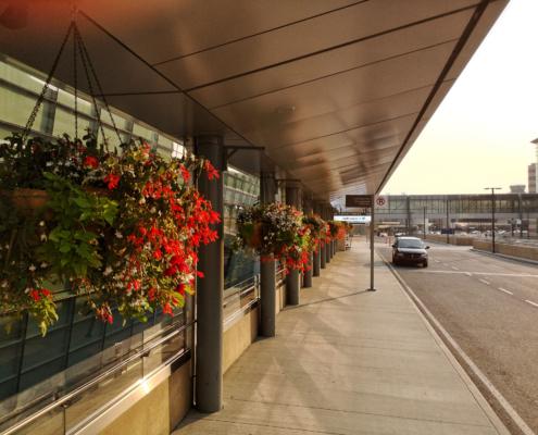 exterior for Alberta Tropical Plants Flowers Flower Baskets