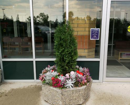 exterior for Alberta Tropical Plants